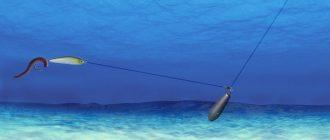 Монтаж отводного поводка и ловля на спиннинг
