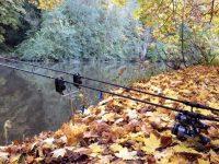 Осенния рыбалка