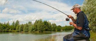 рыбалка на фидер