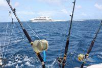 Морское троллинговое тунцовое удилище