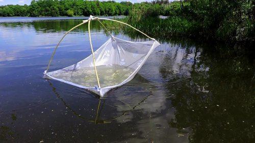 Запрещенная рыболовная снасть паук