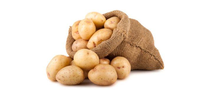 Супер эффективная приманка для карпа — картошка