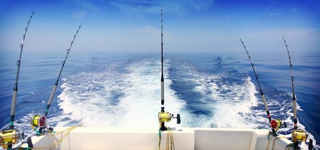 Троллинг рыбалка