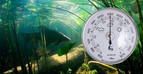 Барометр и рыба