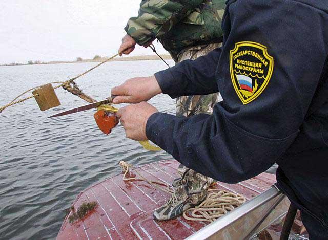 Незаконная рыбалка