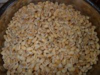 Распаренная пшеница