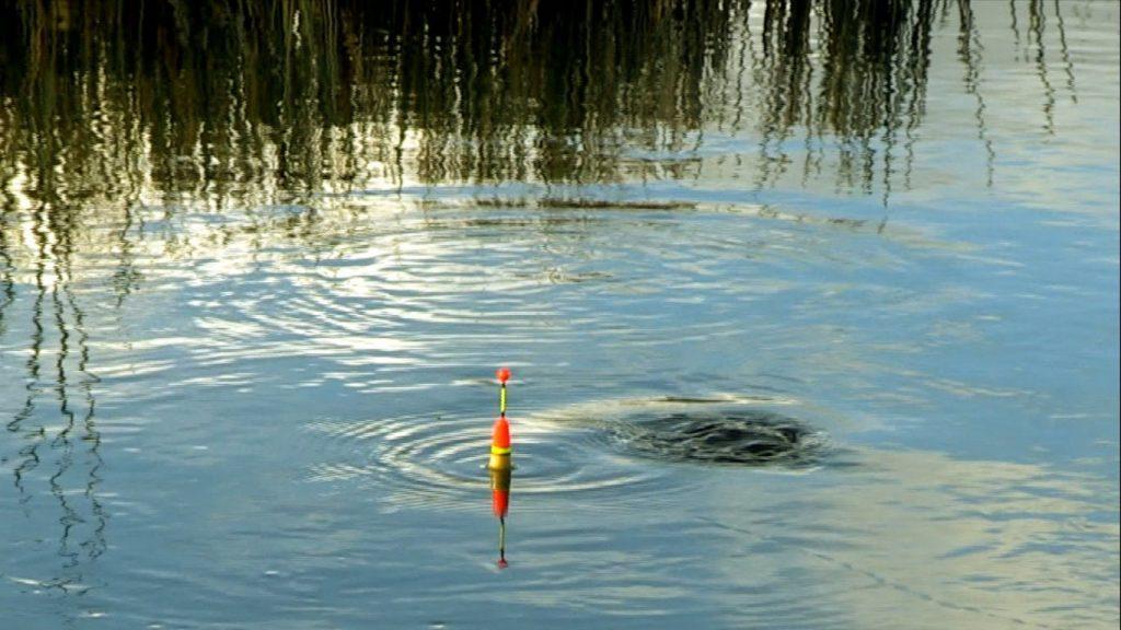 видео ловля рыбы на поплавок