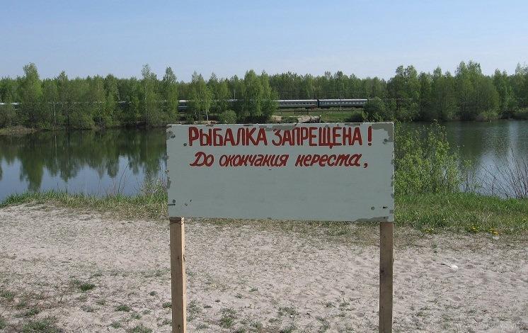 рыбалка запреты и ограничения