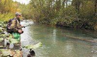 Рыбак ловит на реке