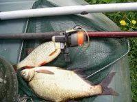Пойманная рыба
